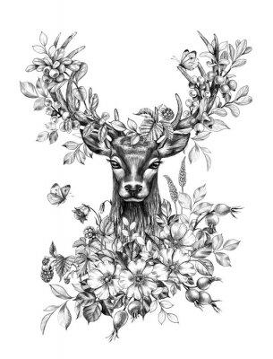 Adesivo Deer with Flowers, Berries and Butterflies Pencil Drawing
