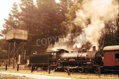 Adesivo Departing steam train in sepia colours