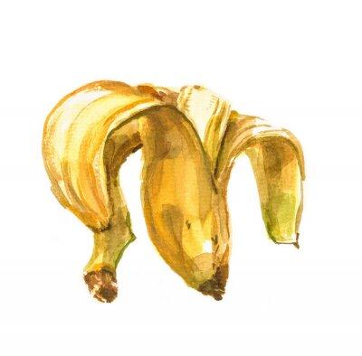 Adesivo dipinto a mano Acquarello illustrazione di una banana