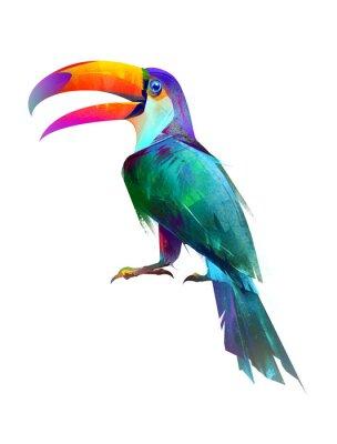 Adesivo disegnato isolato luminoso uccello seduto lato Toucan
