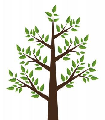 Adesivo disegno albero pianta