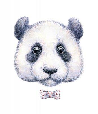 Adesivo Disegno di colore di acqua di un panda su sfondo bianco