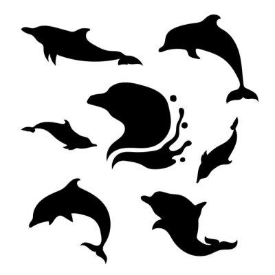 Adesivo Dolphin insieme vettoriale