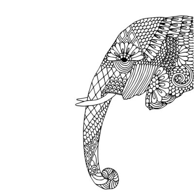 Adesivo Elephant testa