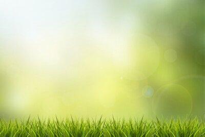 Adesivo Erba e la natura verde sfondo sfocato