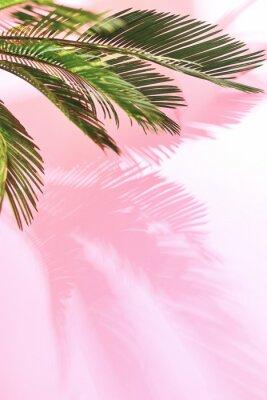 Adesivo Estate pastello sfondo tropicale con palme
