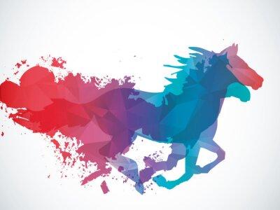 Adesivo Estratto cavallo