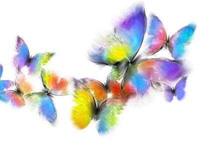 Adesivo farfalle