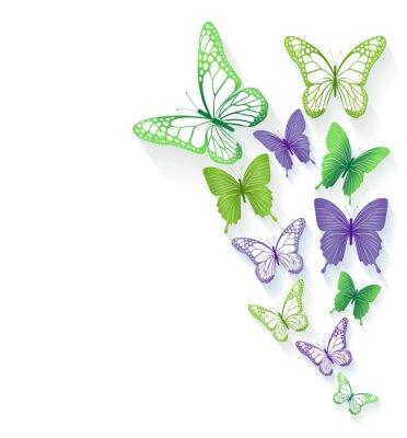 Adesivo Farfalle colorate realistici isolati per la primavera