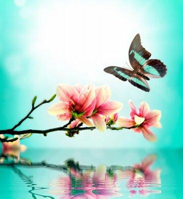 Adesivo Farfalle e fiori di magnolia