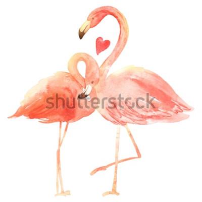 Adesivo Fenicotteri corallini viventi innamorati. Cartolina d'auguri di buon San Valentino dell'acquerello. Disegnato a mano. Rosa