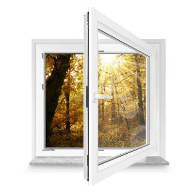 Adesivo Fenster 28