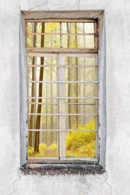 Adesivo Finestra di vecchia casa di cemento con vista sul bosco