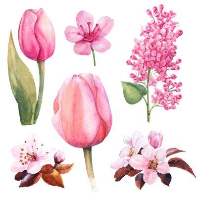 Adesivo fiore dell'acquerello di primavera con tulipano e lilla