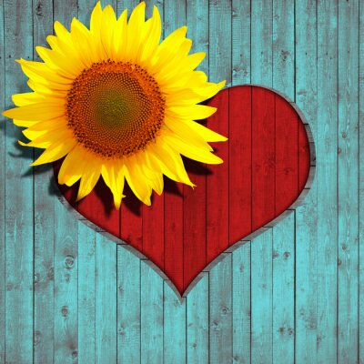 Adesivo fiore di girasole cuore e turchese sfondo legno