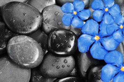 Adesivo Fiori e pietre