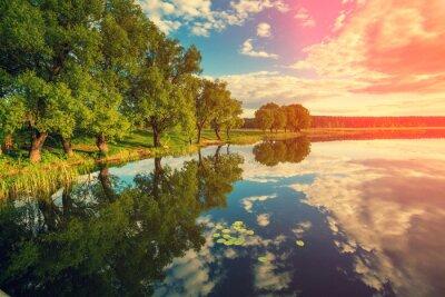 Adesivo fiume con alberi al tramonto