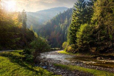 Adesivo fiume foresta in montagna