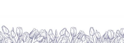 Adesivo Flat horizontal banner template with outline tulips on white background
