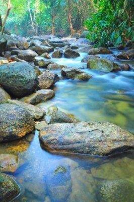 Adesivo Flusso d'acqua attraverso rocce in un ruscello poco profondo in Malesia Jungle