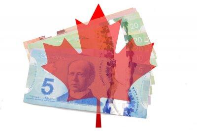 Adesivo foglia d'acero canadese con i dollari su sfondo bianco