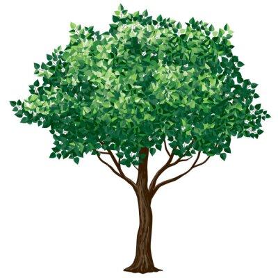 Adesivo Fogliame albero