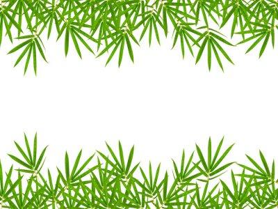 Adesivo foglie di bambù isolato su sfondo bianco