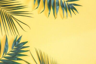 Adesivo Foglie di palma tropicali su sfondo giallo. Concetto di estate Vista piana, vista dall'alto, copia spazio