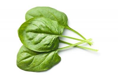 Adesivo foglie di spinaci verdi
