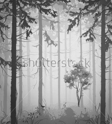 Adesivo forest air landscape with birds, black and white, vector illustration