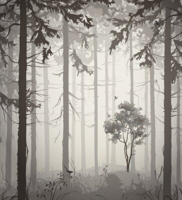 Adesivo foresta