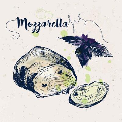 Adesivo formaggio e foglie di basilico mozzarella disegnati a mano