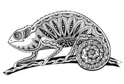 Adesivo foto in bianco e nero camaleonte lucertola in stile tatuaggio