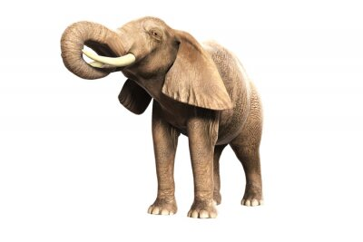 Adesivo Freigestellter Elefant mit erhobenem Russel (gerendertes Bild)