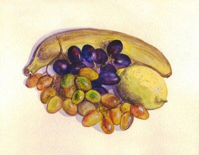 Adesivo Frutta, uva, limone, banana. pittura ad acquerello