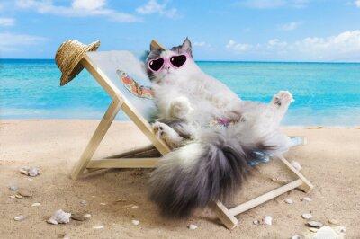 Adesivo Gatto che riposa su un lettino