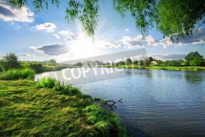 Adesivo Giornata di sole su un fiume calmo in estate