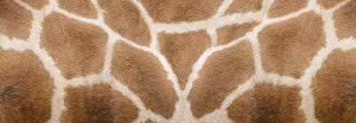 Adesivo Giraffe skin Texture - Image 1