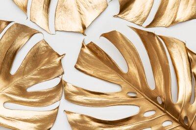 Adesivo Golden monstera leaves on white background