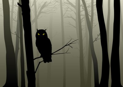 Adesivo Gufo nel Misty Woods
