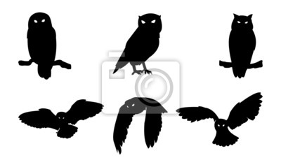 Adesivo Gufo Uccello Silhouette