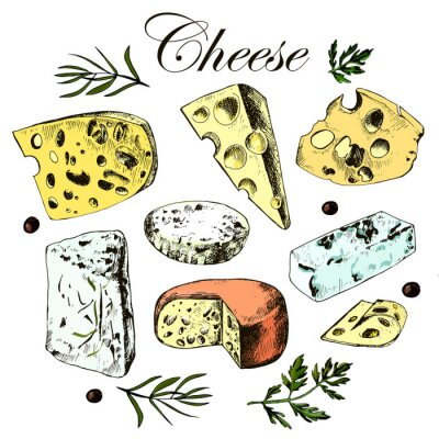 Adesivo hand drawing set with different cheeses