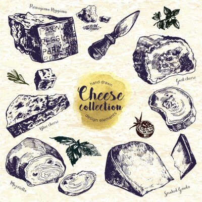 Adesivo Hand Drawn formaggio Set