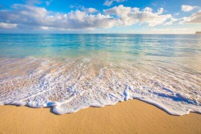 Adesivo Hawaii Spiagge