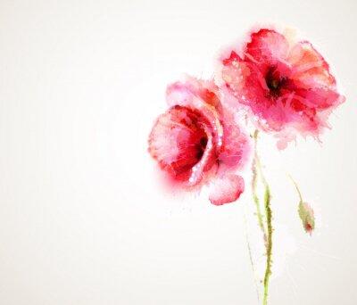 Adesivo I due papaveri rossi fioritura. Greeting-card.