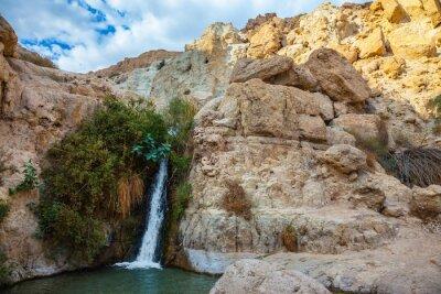 Adesivo Il parco nazionale e riserva di Ein Gedi, Israele