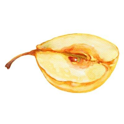 Adesivo Illustrazione della pera metà acquerello su sfondo bianco