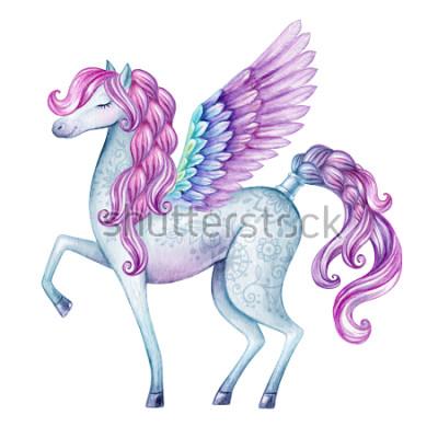 Adesivo illustrazione di acquerello Pegaso, creatura di fiaba, stallone volante, clip art animale magico, isolato su prioritàità bassa bianca