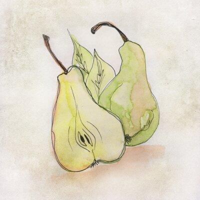 Adesivo Illustrazione di frutta con acquerello
