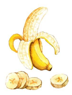 Adesivo Illustrazione disegnata a mano acquerello di banane